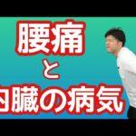 【腰痛と内臓の病気】腰が痛い時に疑われる病気5選
