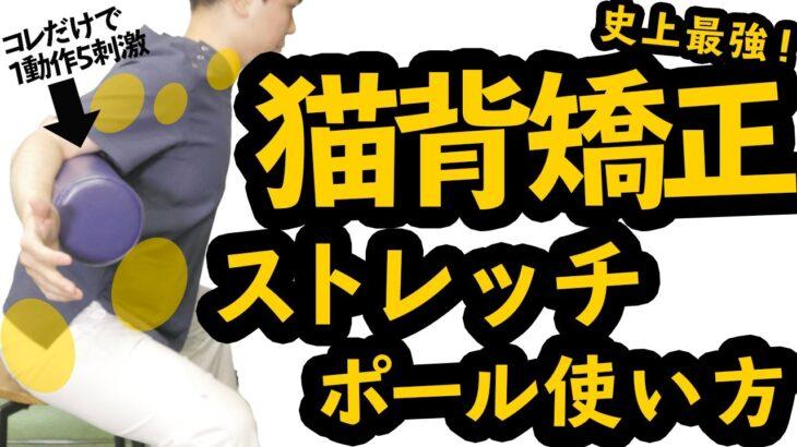 【ストレッチポール】座って5分!猫背矯正したいなら1動作で5箇所刺激するおすすめ使用法はコレ!