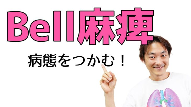 Bell麻痺とは?:顔面神経(Part.4)