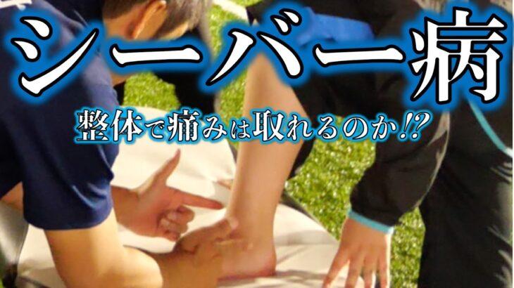 【成長痛】2年前からのシーバー病で悩む少年を整体で救うことが出来るのか!?