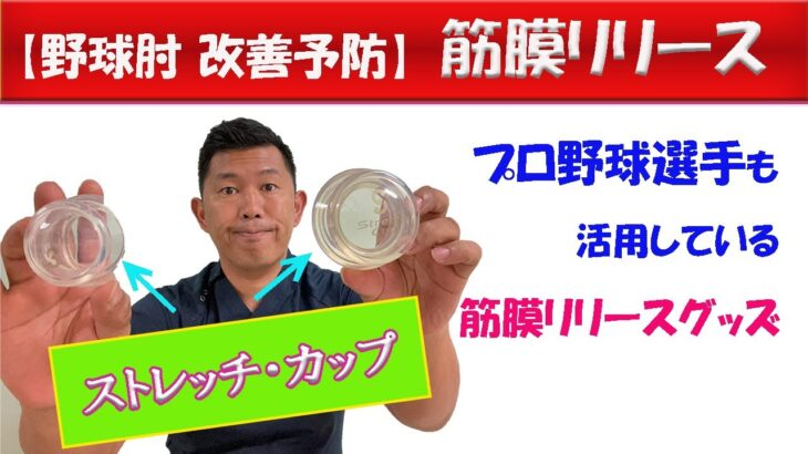 【野球肘筋膜リリース】野球肘改善ストレッチカップ