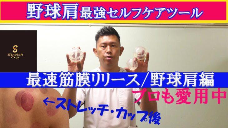 【野球肩セルフケア方法】ストレッチカップ使用/筋膜リリースで野球肩改善