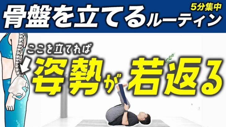 【毎日5分】反り腰や開脚ができない原因の「骨盤」をしっかり立てるルーティン【ストレッチ】