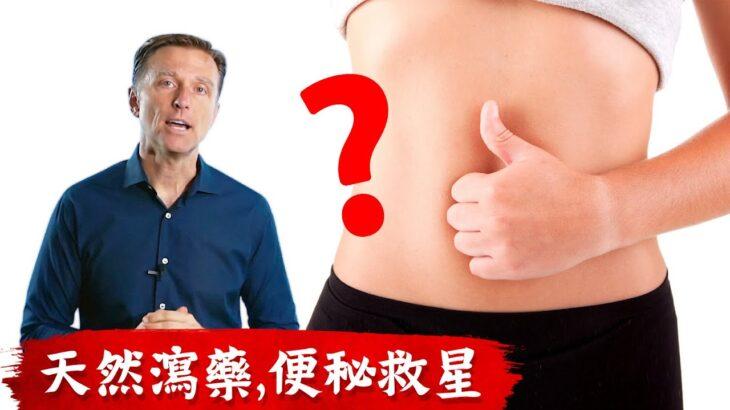 便秘救星,7種天然瀉藥,有益菌消化纖維,柏格醫生 Dr Berg