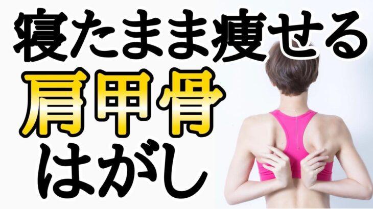 痩せスイッチ肩甲骨✨寝たまま肩こり解消!超気持ちいい🎵